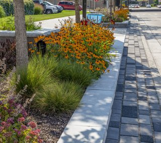 Pearl Street Streetscape, Grand Rapids, MI <br> Products: Artline™ & Lineo™ Dimensional Stone